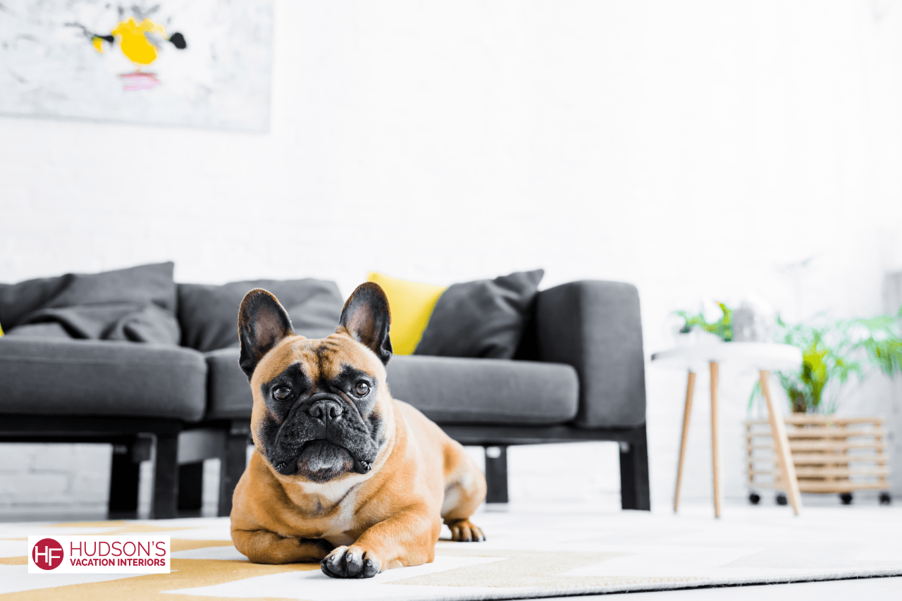 pet-friendly vacation rental tips